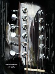 Martie's Guitar - Serendipity - Head - Martie Hevia (c) All Rights Reserved - WM
